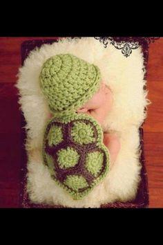 Baby turtle. Whoopsie! Human...... So cute!
