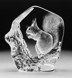 Squirrel - Crystal Etching by Mats Jonasson-MJ 33280