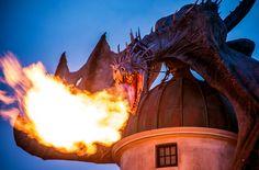 Walt Disney World. Universal Orlando Resort. Mickey Mouse. Harry Potter. The debate has raged since both entered the studios theme park scene in Orlando, a