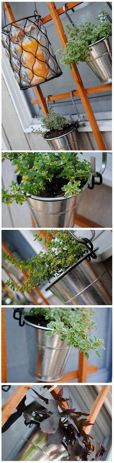The idea of an herb garden is a good one, especially for those looking for low maintenance gardens. That said, the idea of a bunch of little pots all over your deck, stoop, or balcony aren't always appealing. Instead of keeping it under foot, check out this wall mounted version instead...