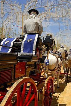 Coachman , Feria de Caballo , Jerez de la Frontera , Cadiz , Andalusia , Spain…