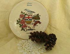 Check out this item in my Etsy shop https://www.etsy.com/listing/478392651/retro-canadian-souvenir-plate-kitsch