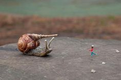 Snail · Slinkachu · Street Art · Mini · 2013 · Art · People · London · Red · Blue · Open Air Museum