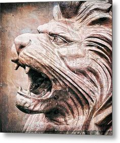 Lion Guardian Metal Print by Brian Mollenkopf. All metal prints are professionally printed, packaged, and shipped within 3 - 4 business days and delivered ready-to-hang on your wall. Art Prints For Sale, Fine Art Prints, Aluminium Sheet, Got Print, Delaware, High Gloss, Fine Art America, Art Work, Ohio