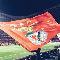 Big Love, First Love, Football Fans, Eagles, Of My Life, My Dream, Portugal, Champion, Good Things