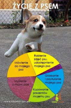 Najlepsze Obrazy Na Tablicy Psie Cytaty 8 Psie Cytaty