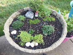 The start of Will's fairy garden