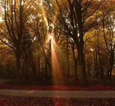 amazing-sun-rays