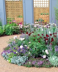 Zilverpaars beplantingsplan / Herbaceous border in silver and purple #plants #border #garden #planting #plan Order here: http://www.tuinieren.nl/a/beplantingsplannen/zilverpaarse-border