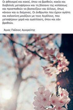 Dandelion, Faith, Flowers, Plants, Cute, Bonito, Dandelions, Plant, Loyalty