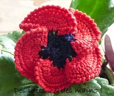 Crochet Flower Fleur : Coquelicot au crochet - poppy from a French site - I wonder how good babblefish would be for translating a pattern? Poppy Crochet, Crochet Poppy Free Pattern, Beau Crochet, Crochet Motifs, Crochet Flower Patterns, Crochet Hooks, Free Crochet, Crochet Patron, Hat Crafts