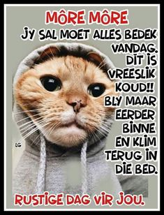 Afrikaanse Quotes, Goeie Nag, Goeie More, Morning Blessings, Prayer Quotes, Stupid Funny Memes, Good Morning Quotes, Cute Quotes, Love You