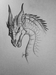 Queen Scarlet from the Wings of Fire series Queen Scarlet from the Wings of Fire series Pencil Art Drawings, Cool Art Drawings, Art Drawings Sketches, Drawing Ideas, Wings Of Fire Dragons, Cool Dragons, Animal Sketches, Animal Drawings, Easy Dragon Drawings
