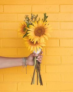 Ideas For Aesthetic Wallpaper Pastel Yellow Yellow Aesthetic Pastel, Aesthetic Colors, Flower Aesthetic, Korean Aesthetic, Sunflower Wallpaper, Flower Background Wallpaper, Flower Backgrounds, Pastel Background, Pastel Wallpaper