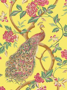 Peacock Wallpaper | Chatsworth | AmericanBlinds.com