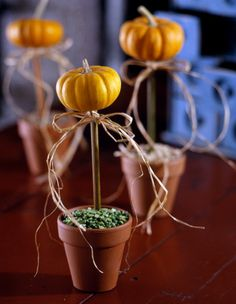 Turn miniature pumpkins into tabletop topiaries with a raffia bow as the finishing touch.