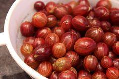 Confiture de groseilles à maquereaux Chutney, Sprouts, Onion, Brunch, Chips, Vegetables, Cooking, Desserts, Food