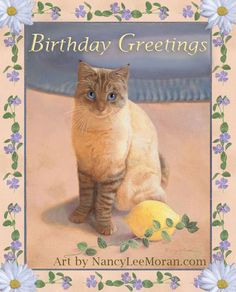 2015 greeting-card mockup design with hand-painted border of pale peach and beige, with vinca vines and daisy flowers. In the center is cat art by Nancy Lee Moran of a Lynx Colorpoint Shorthair, Tabby Point Siamese, lemon fruit & vinca vine.  Oil painting for art licensing USA, domestic cat, Surface Pattern Illustration #artlicensing #cat #gato #feline #Siamese #tabby #lemon #blue #greetingcard #birthday