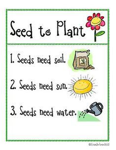 MY SEED TO PLANT PROJECT - TeachersPayTeachers.com