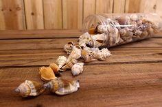 Κοχύλια Συσκευασία Διάφορα 2-3cm SH172207  Κοχύλια σε διάφορα σχέδια και χρώμα φυσικό.Διαστάσεις: 2-3cmΗ τιμή αφορά τη συσκευασία. Garlic, Stuffed Mushrooms, Vegetables, Food, Stuff Mushrooms, Vegetable Recipes, Eten, Veggie Food, Meals
