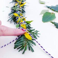 DIY Smudge Sticks Sonnenblume Smudge Sticks, Kraut, Smudging, Diy, Pointing Fingers, Drying Herbs, Elder Flower, Sunflowers, Autumn