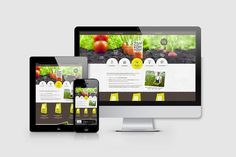 Živý Kompost Corporate Identity | BPR Creative Online Web Design, Corporate Identity, Online Marketing, Creative, Compost, Branding, Visual Identity
