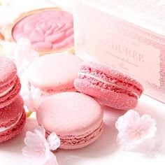 More macarons! And no surprises that they are pink.Its never enough, I always want more ❤️