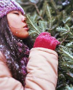 Winter Forest holiday diffuser blend!   Spark Naturals #essentialoil #essentialoils