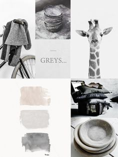 Give us Grey! See also: http://www.brabbu.com/en/inspiration.php