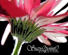 """Sugar Coated"" from Suzy2.0: Floral Digital Paintings, #art, #floral, #pink"