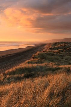 Moody Nature lvndscpe: Port Waikato New Zealand Nature Aesthetic, Travel Aesthetic, Beige Aesthetic, Beautiful World, Beautiful Places, Beautiful Beautiful, Landscape Photography, Nature Photography, Travel Photography