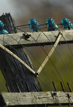 1000 images about insulators on pinterest glass for Glass telephone pole insulators