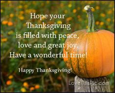 Hope your Thanksgiving Thanksgiving Qoutes, Happy Thanksgiving Friends, Thanksgiving Pictures, Thanksgiving Blessings, Thanksgiving Greetings, Thanksgiving Preschool, Thanksgiving In Usa, Thanksgiving Outfit, Thanksgiving Vegetables