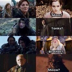 "Game of Thrones / harry Potter funny memes Lol ""meow? Harry Potter Jokes, Harry Potter Fandom, Got Memes, Funny Memes, Acteurs Game Of Throne, Game Of Thrones Funny, Fantastic Beasts, Jon Snow, Hogwarts"