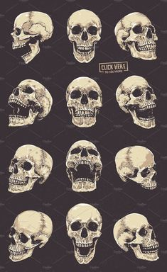Anatomic Skulls Vector Pack Skulls # Pack # Anatomic - Anatomic Skulls Vector Pack Skulls # Pack # Anatomic You are in the right place about diy - Skeleton Drawings, Skeleton Art, Skeleton Love, Skull Anatomy, Anatomy Art, Skull Tattoo Design, Skull Tattoos, Tattoo Designs, Skull Reference