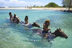 Top Things to Do in Jamaica on Family Trips: zip-lining, horse-riding, river tubing, a bobsled mountain coaster ride, catamaran trip at Negril, and more.: Braco Stables, Adventure Tours: Hiking, Biking, Horseriding