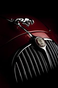 Jaguar by Tim Wallace, via 500px  My favorite car beautifully photographed