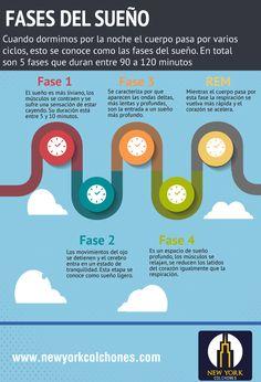 Ciclos del Sueño. Cuando dormimos por la noche el cuerpo pasa por varios ciclos, esto se conoce como las fases del sueño. En total son 5 fases que duran entre 90 a 120 minutos y se dividen a su vez en 5 etapas diferentes.