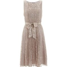 Monsoon Leigh Lace Dress (8.375 RUB) ❤ liked on Polyvore featuring dresses, brown cocktail dress, lace dress, pleated lace dress, brown dresses and monsoon dresses
