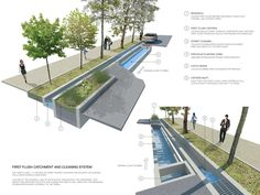 INTERVIEW: How These Pretty Rainwater Gardens Could Vastly Improve Water Quality in NYC