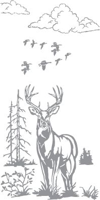 Glass etching stencil of Stag and Ducks. In category: Birds, North American Mammals, Trees, Water Fowl