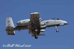 "https://flic.kr/p/SdTS49 | Fairchild A-10C Warthog cn0628 USAF 80-0276 DP 47 FS  Dog Patchers | Davis-Monthan 02/01/17 Fairchild A-10C ""Thunderbolt II/Warthog "" (0628)(USAF 80-0276)(DP 47th Fighter Squadron Dog Patchers USAFR Davis-Monthan AFB AZ)"