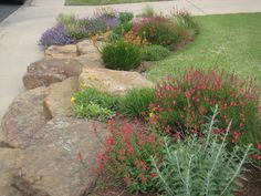 Rock garden Xeriscape landscaping in Texas Landscaping With Large Rocks, Landscaping With Boulders, House Landscape, Landscape Design, Garden Design, Landscape Photos, Landscaping Austin, Front Yard Landscaping, Landscaping Ideas