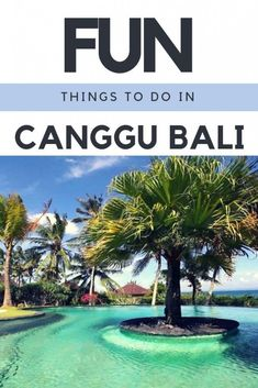 Canggu Bali has beaches, yoga, surfing and much more to do, that makes it well worth visiting. Here is a list of fun things to do on Canggu Bali. Bali Travel Guide, Asia Travel, Travel Guides, Travel Tips, Cool Background Music, Bali Sunset, Canggu Bali, Backpacking Asia, Blue Lagoon