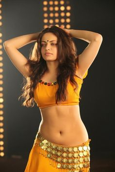 Sneha-Ullal-Hot-Stills-in-Action