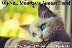Oh No Monday's coming quote 11/29/15