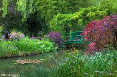 French countryside - Giverney