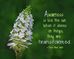Thich Nhat Hanh quote about awareness.