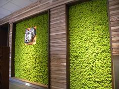 MOSS Wall & Projects: FPZ, Concorrezzo (MB), Italy www.themossdesign.com www.verdeprofilo.com #verdeprofilo #MOSS #WallProjects #design #MOSStile