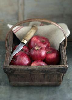 le journal de la photographie : jean cazals cook books